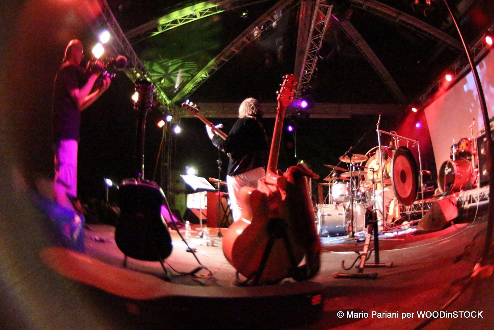 WOODinSTOCK 2013 © Mario Pariani